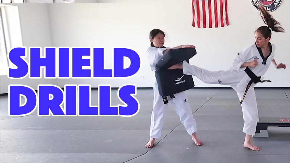 learn martial arts drills online