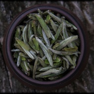 Wildcrafted Fujian Silver Needle from Whispering Pines Tea Company