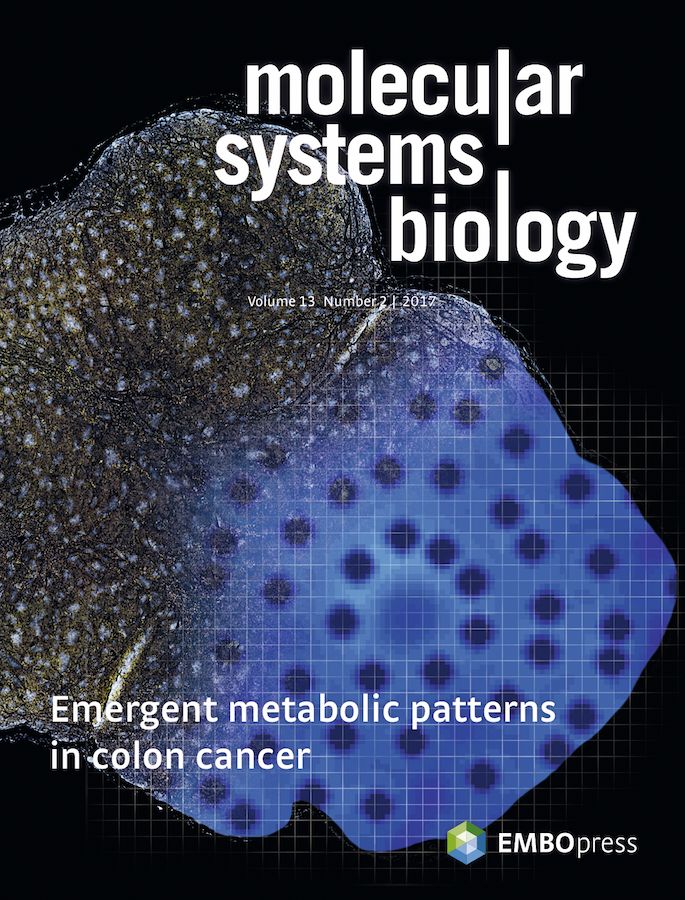Template for submissions to Molecular Systems Biology