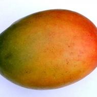 Major Mango Honeybush from Adagio Teas Custom Blends