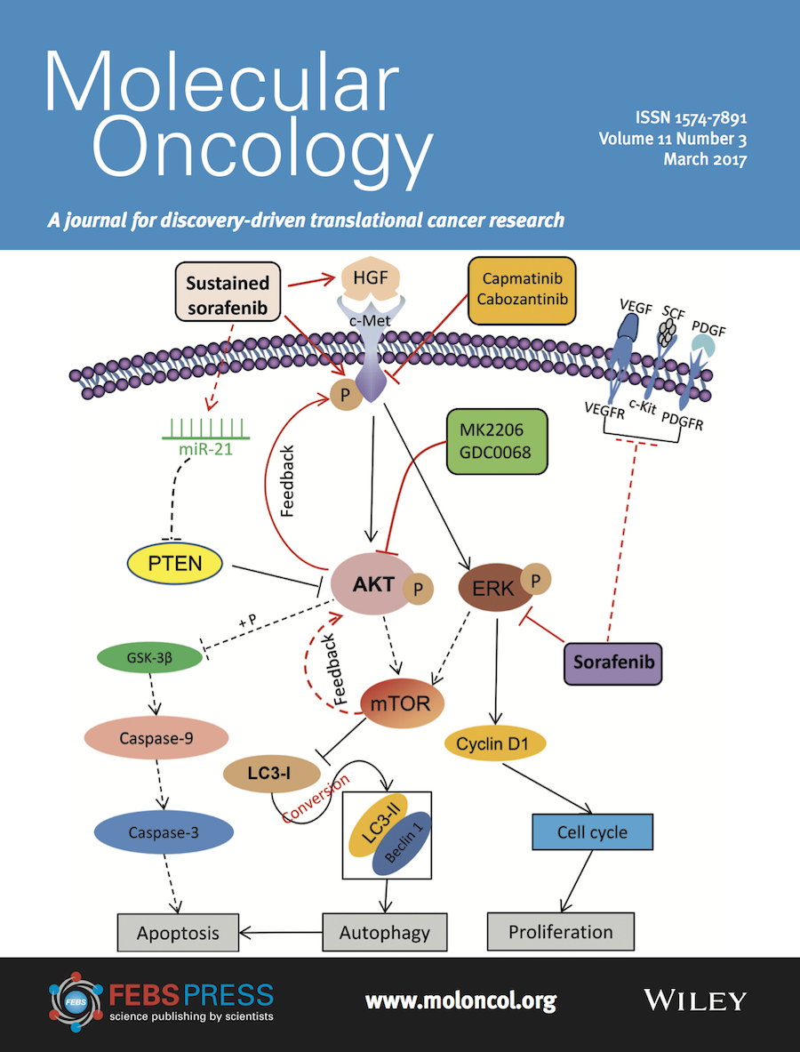 Template for submissions to Molecular Oncology