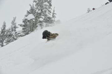 Jocob waist deep powder at cat skiing