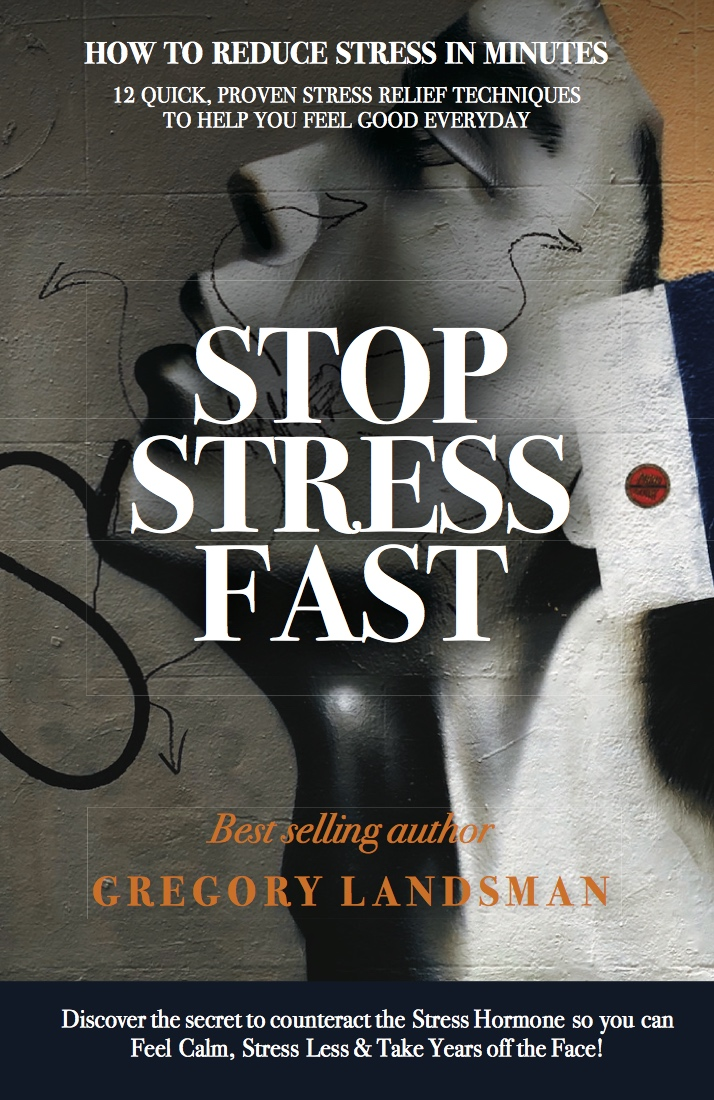 Stop Stress Fast by Gregory Landsman
