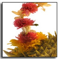 Three Moon Pearl Blooming Tea from The Exotic Teapot