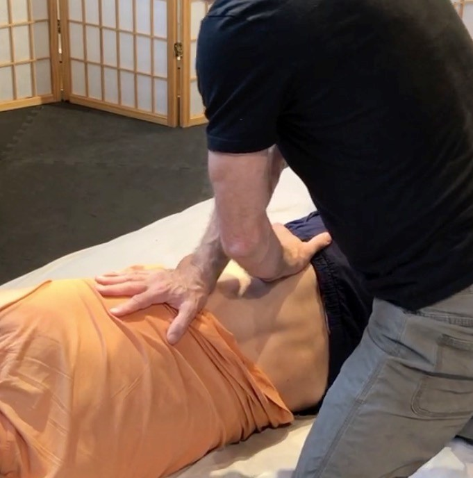 Coaching the Body for Low Back, Gluteal and Pelvic Pain