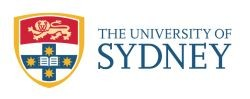 social media course in Sydney at University of Sydney