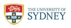 social media course in Sydney at University of Sydney