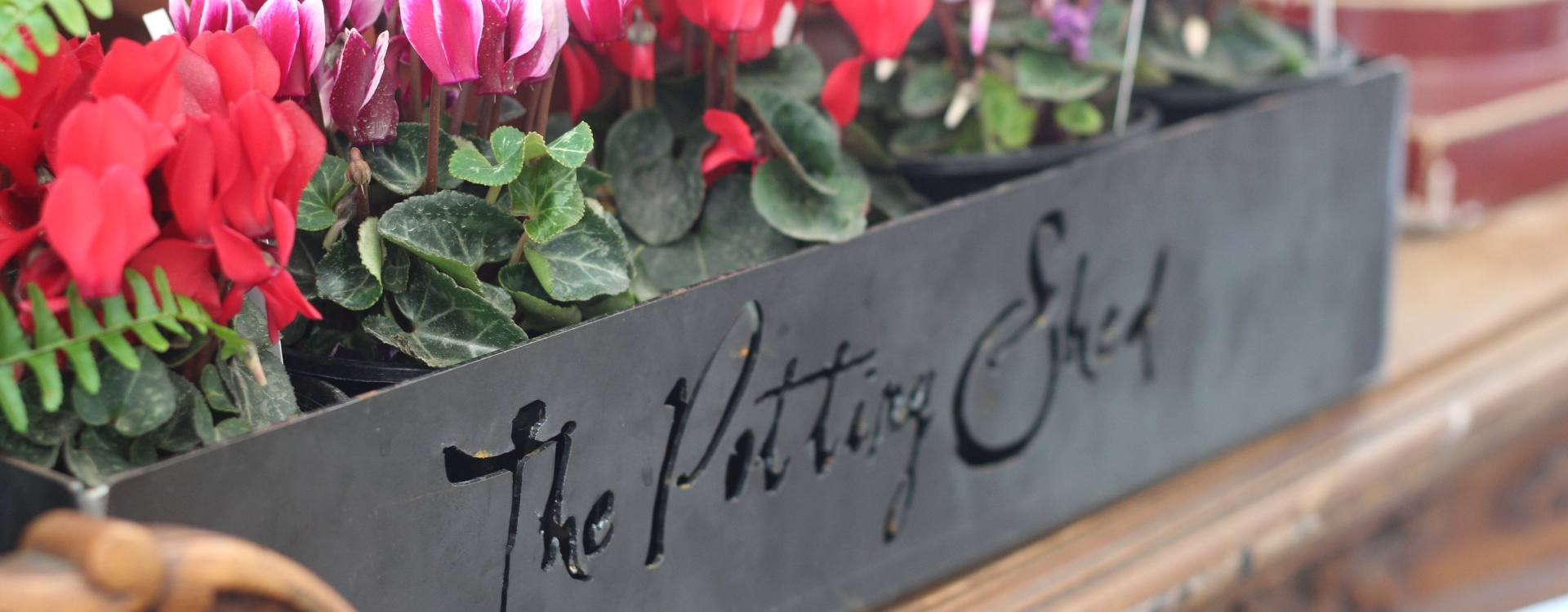 The Potting Shed cover image |  | Travelshopa