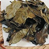 Kyobancha from Maiko