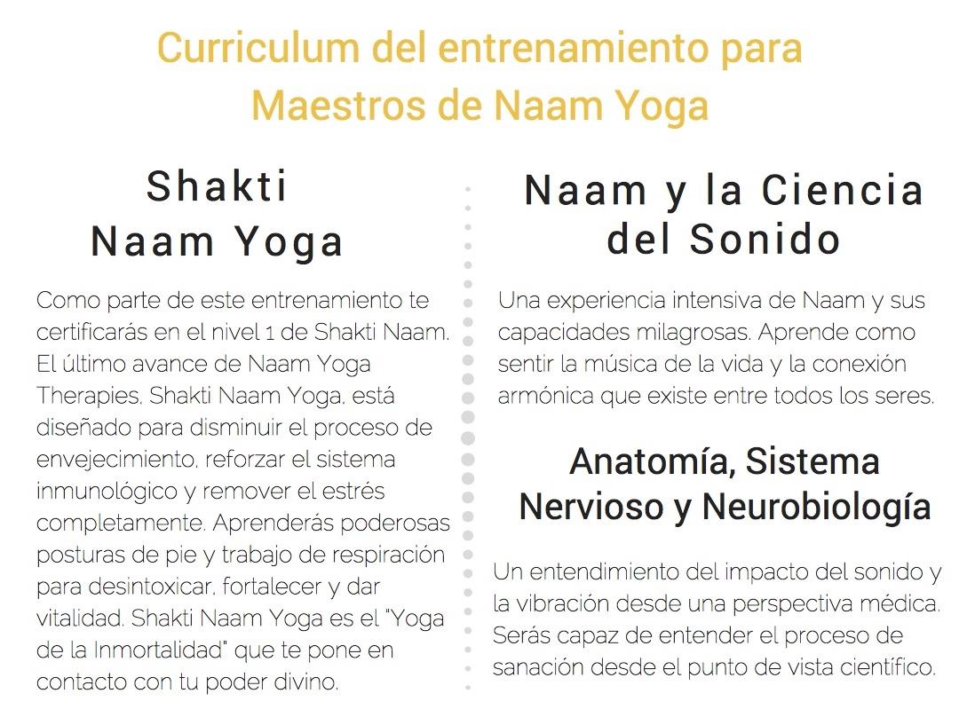 Naam Yoga Nivel 1 2017-18: Mexico | Naam Yoga