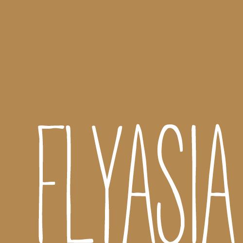 林扁 FlyAsia