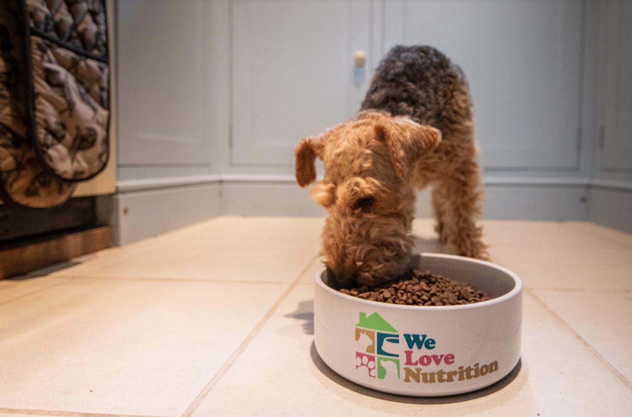 We Love Training Basic Pet Nutrition Course