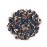 Jasmine Pearls from Goldfish Tea