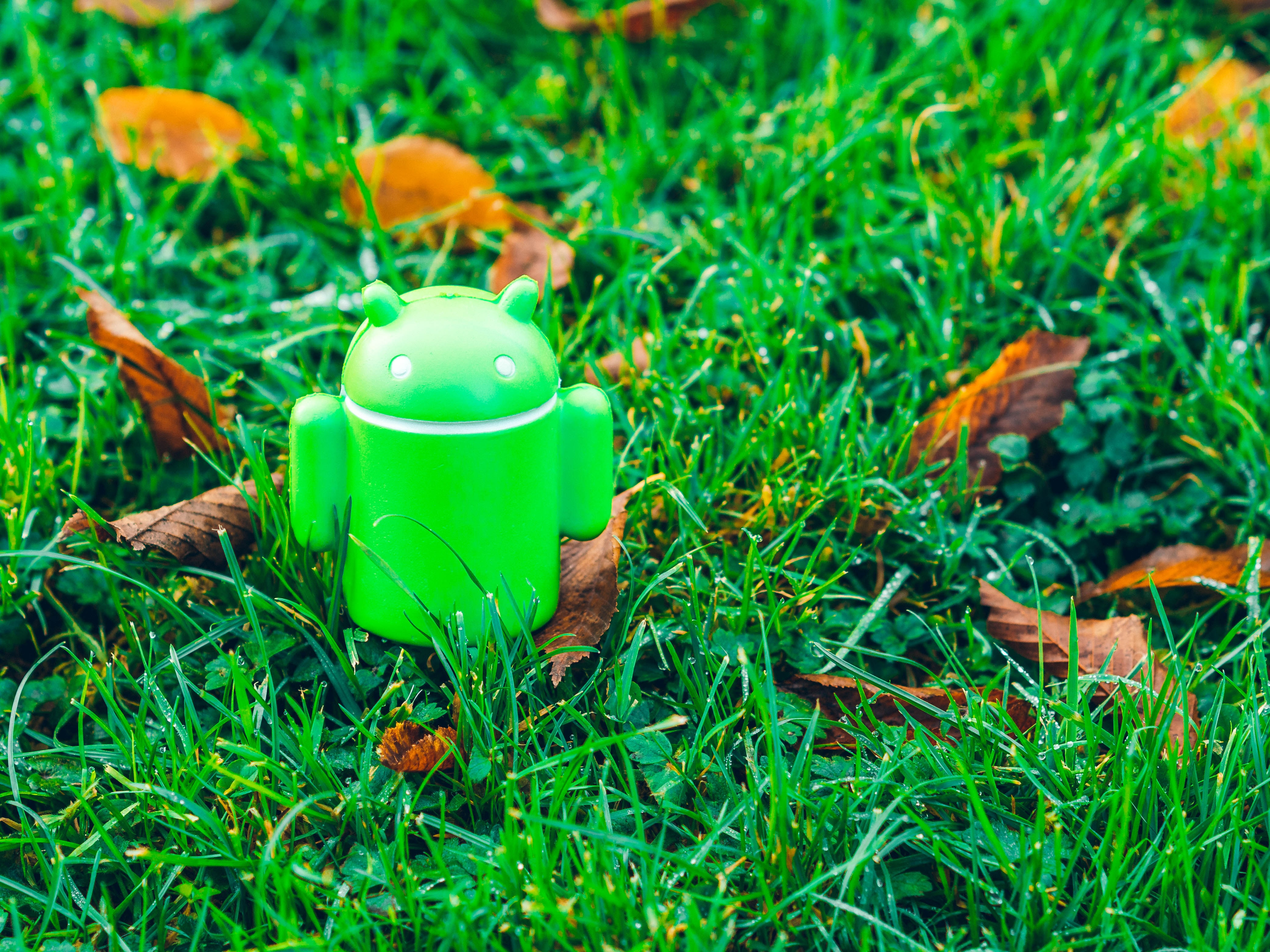 A green Android figurine on a lawn