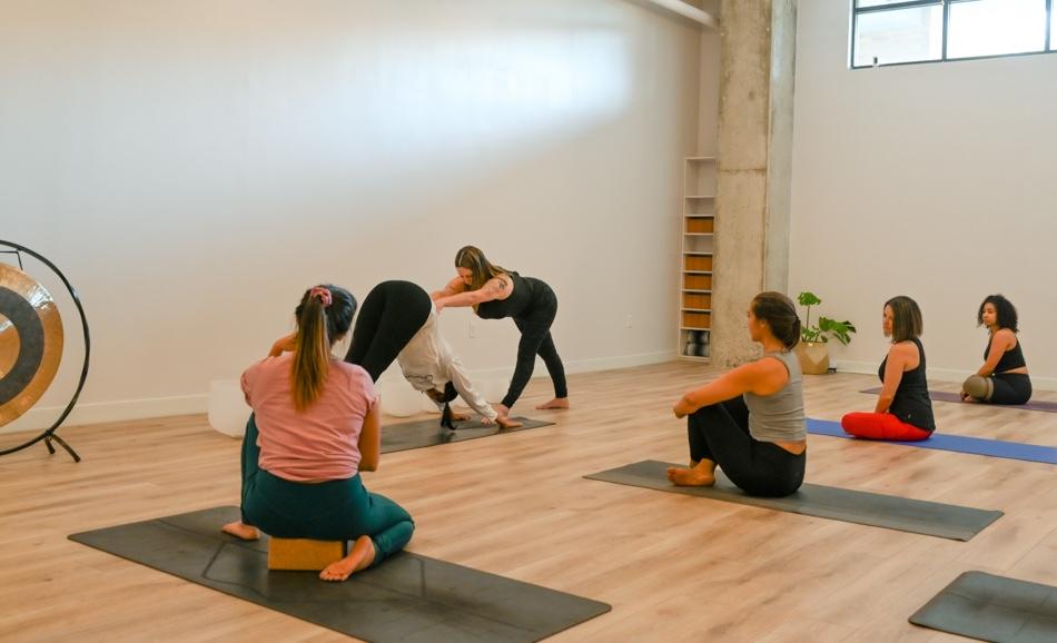 200 Hour Online Yoga Teacher Training Certification | My ...