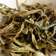2018 Spring EoT 10 Year Anniversary Yiwu from The Essence of Tea