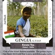 Gingia - GTOP Estate Tea from Metropolitan Tea Company
