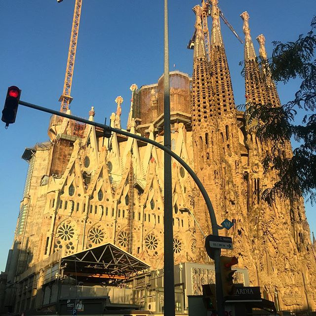Barcelona Experience Profile Image