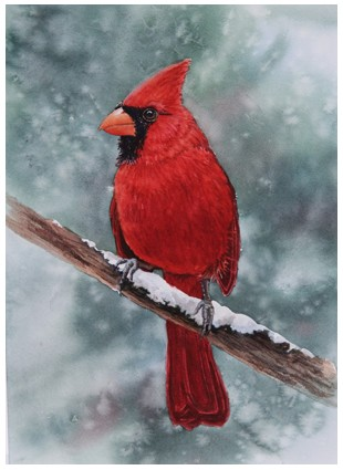 Cardinal from How To Paint Book by Walter Foster