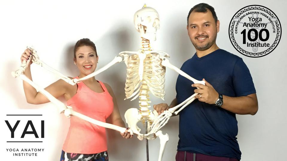 Curso de Anatomía de Yoga Inteligente | Sādhak® Yoga Institute