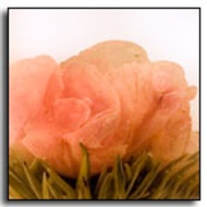 Peony Cascade Blooming Tea from The Exotic Teapot
