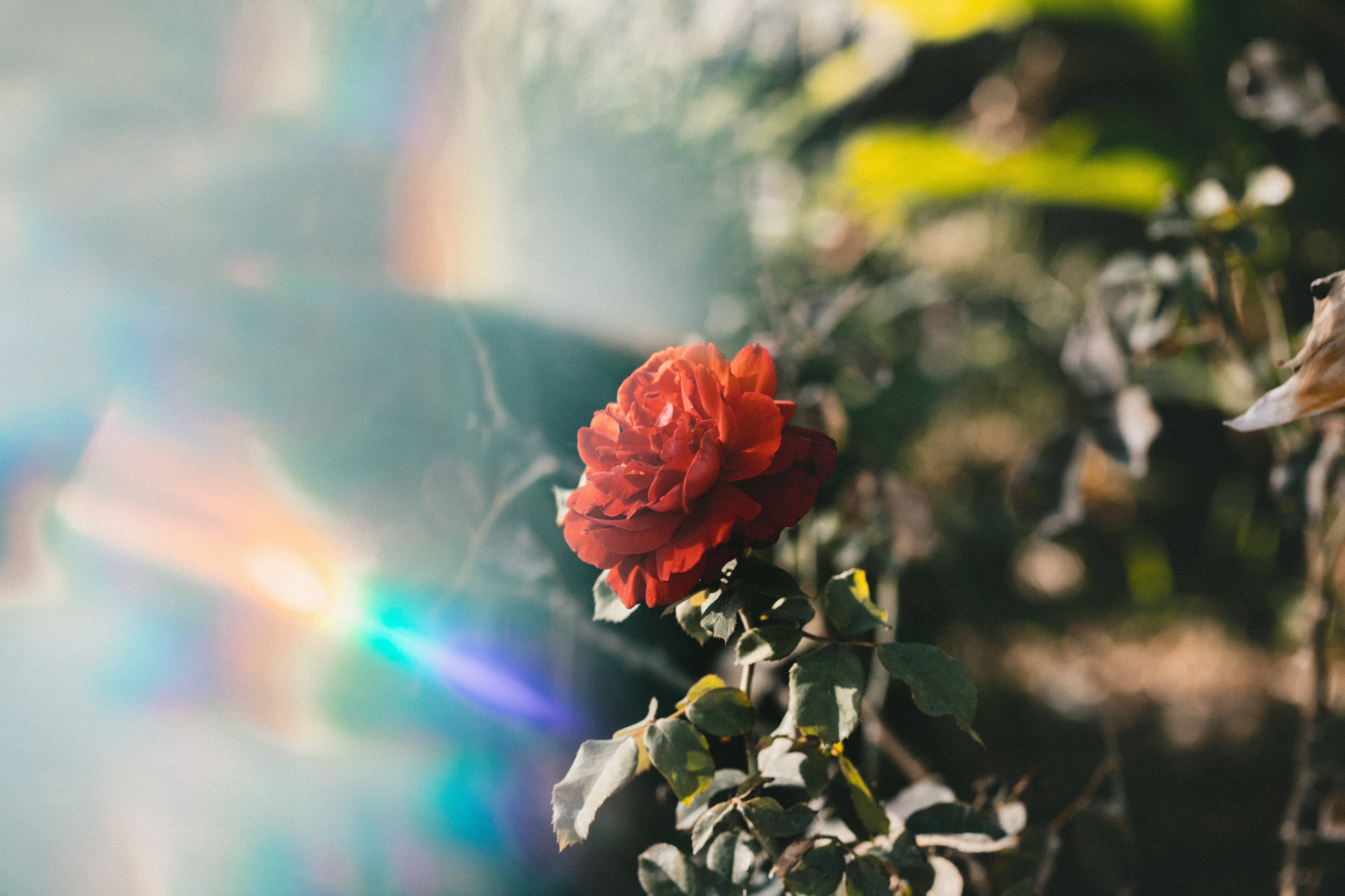 how to attune yourself to reiki