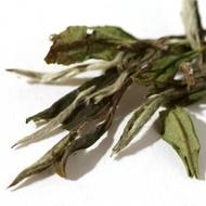 White Peony White Tea (Fuding Bai Mu Dan) from Jing Tea