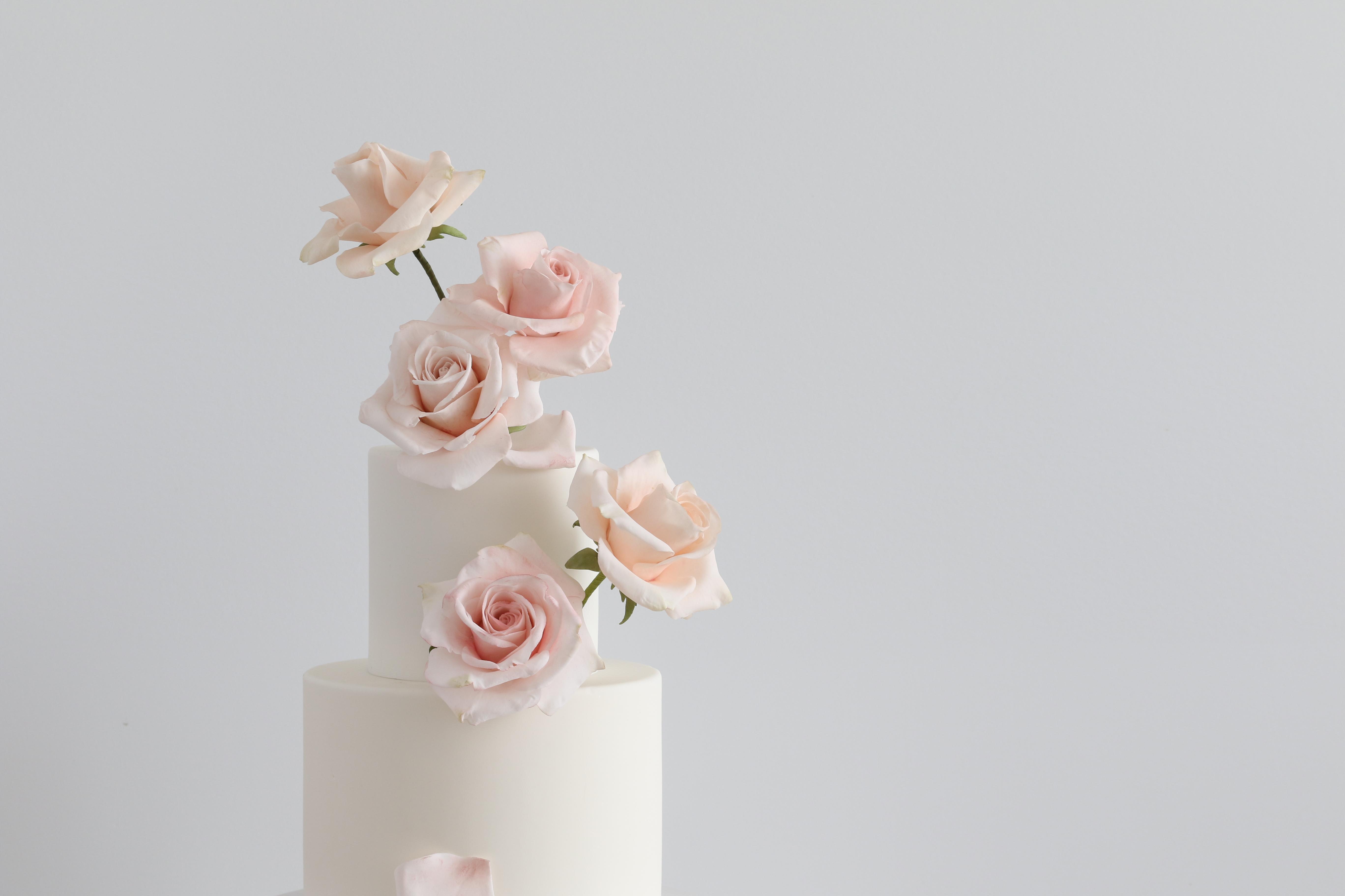 Modern Rose tutorial
