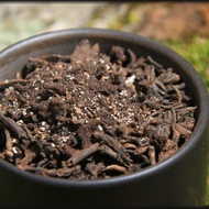 OLD VERSION (cocoa powder and cardamom) - Art of Darkness from Whispering Pines Tea Company