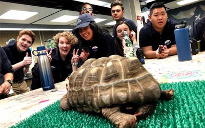 Shedd Aquarium Teen Orientation