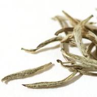 Silver Needle White Tea (Fuding Bai Hao Yin Zhen) from Jing Tea