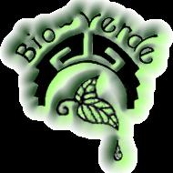 Silver Ring from www.bioverde.net
