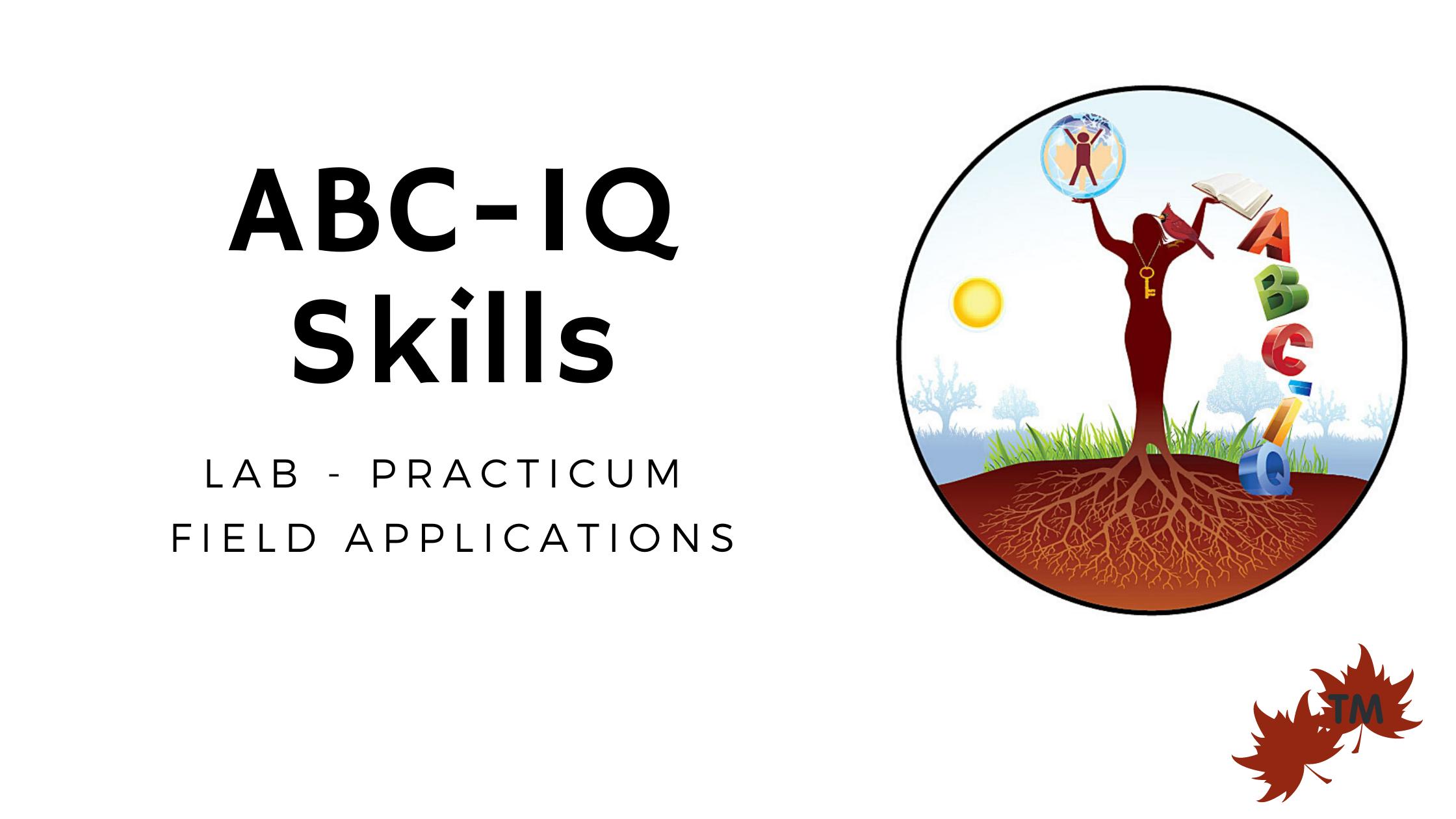 ABC-IQ Skills Lab SaaS