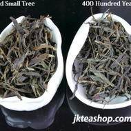 "2011 Spring Nan Nuo Mountain ""Ban Po Lao Zhai"" Old Tree & Small Tree Tasting Pack from jkteashop"
