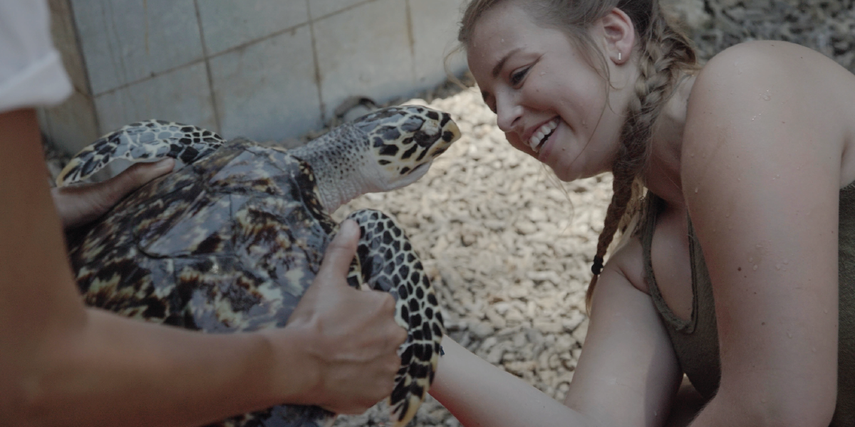 Volunteer Abroad With Turtles In Bali