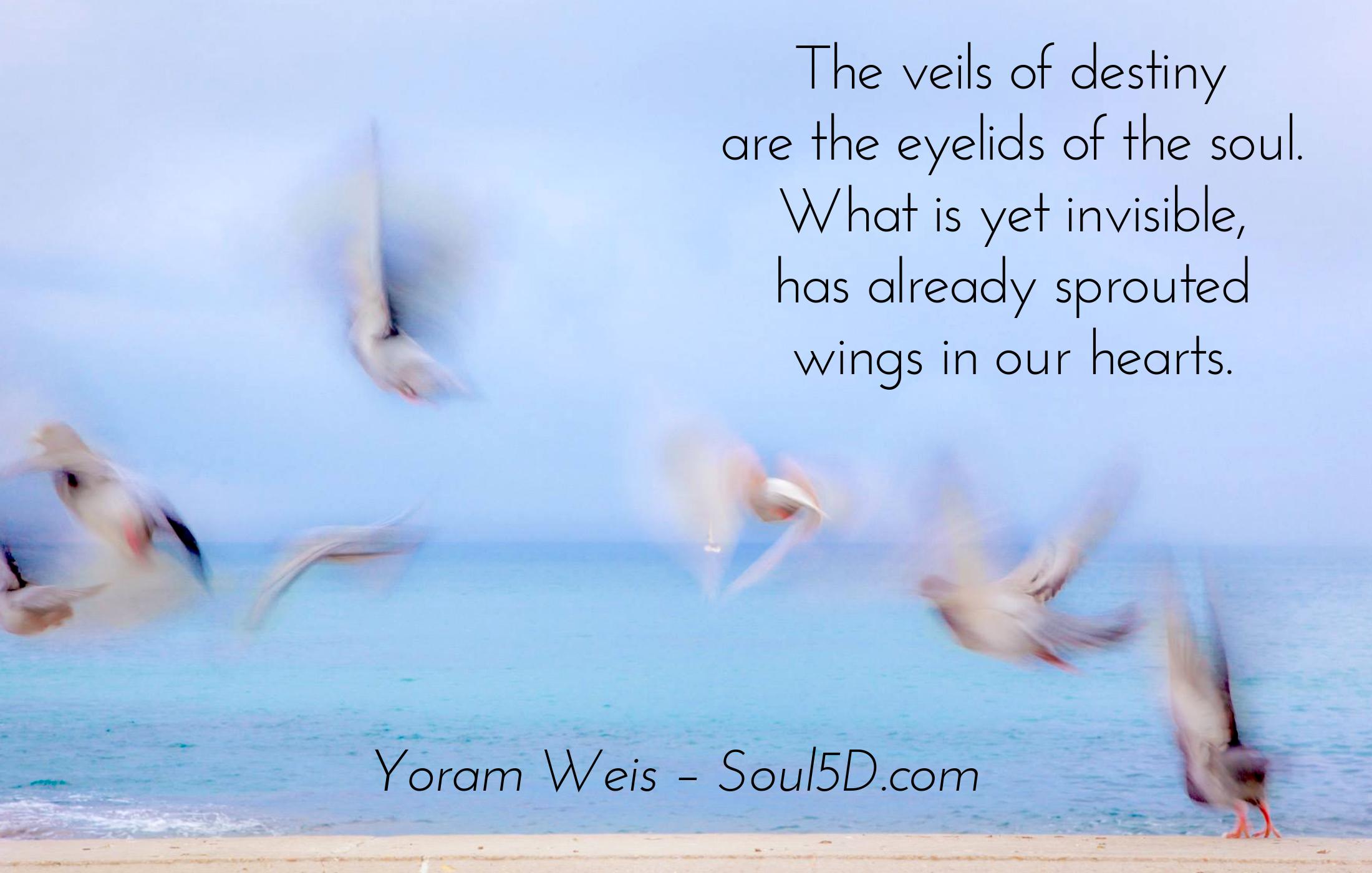 In Soul's-Eye View