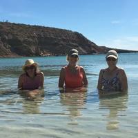Las Tres Sirenas         Patty, Marcia & Sue