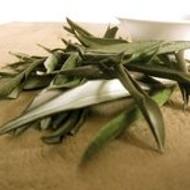 (English) Olive Leaf from Rare Tea Company