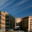 Հայաստանի Ամերիկյան Համալսարան – American University of Armenia