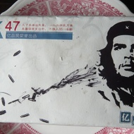 Guevara Shu from Life In Teacup