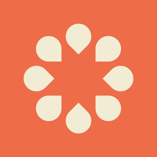 Desana Company Logo