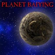 Planet Baiying from Crimson Lotus Tea