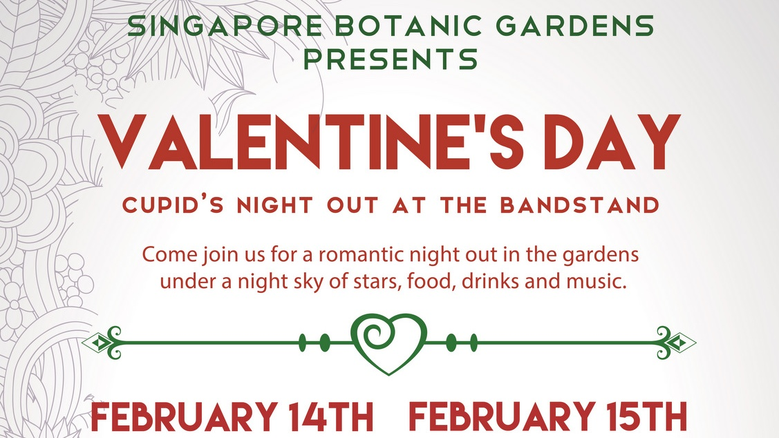 Valentine's Day 2015 - Cupid's Night Out
