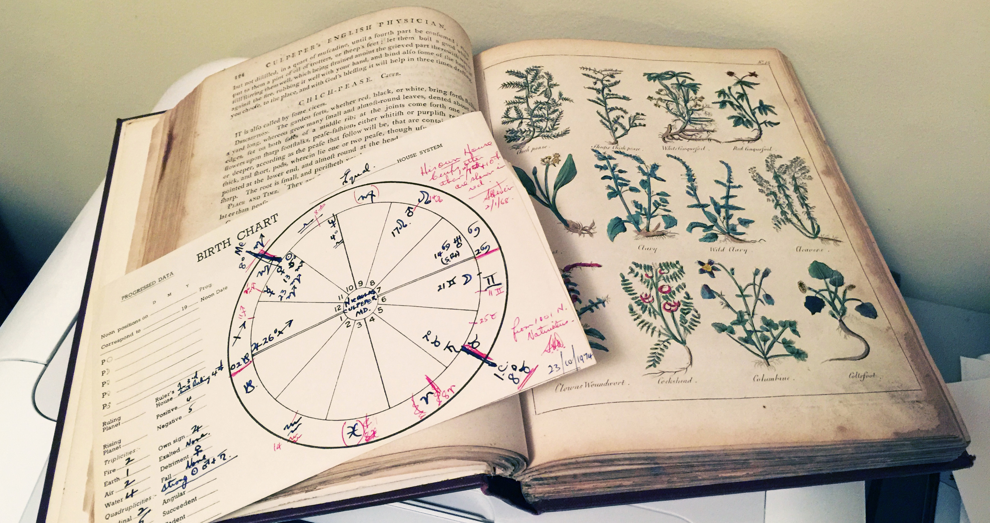 Culpeper's Birth Chart and a 17th century copy of his 'Herbal' ~ a book that is still in print today!