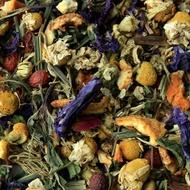 Orange Blossom Chamomile from Amoda Tea