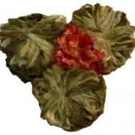 three brothers green ( jasmine) from Chado Tea Room