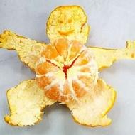 Mandarin Peel from Nature