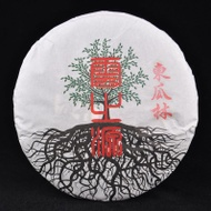 "2013 Yunnan Sourcing ""Dong Gua Lin"" Old Arbor Raw from Yunnan Sourcing"