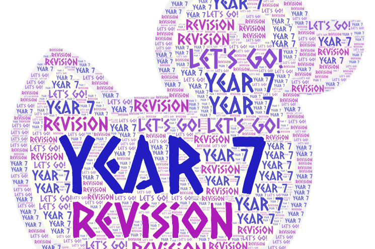 Year 7 (Moy) Revision Leader Board