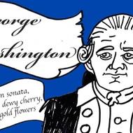 George Washington - American Revolution from Adagio Teas Custom Blends